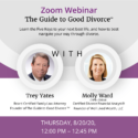The Guide To Good Divorce℠ 8/20 Webinar